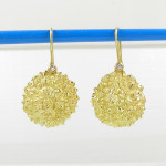 earrings litchi